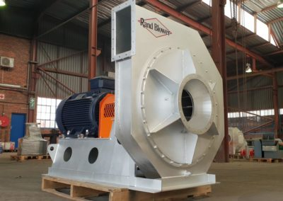 Rand-Blower-Stainless-Steel-Process-Fan
